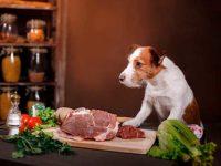 Основной источник белка - мясо