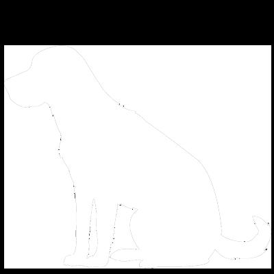 Для пожилых собак