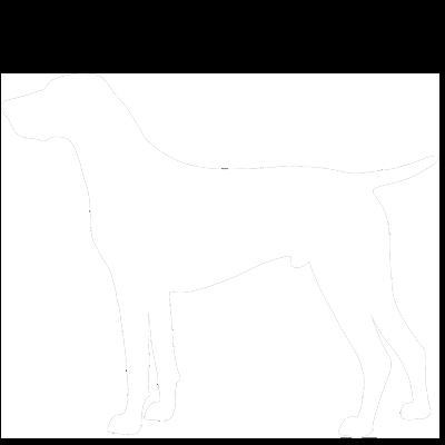 Для взрослых собак