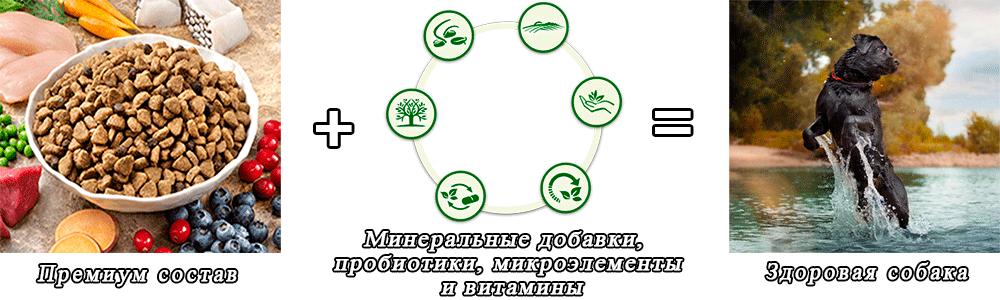Преимущества кормов БИСКО